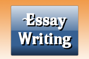 Visit to an exhibition essay