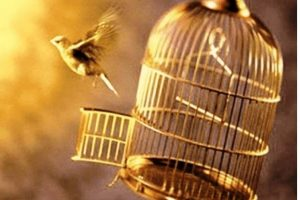 THE CAGE BIRDS ESCAPE